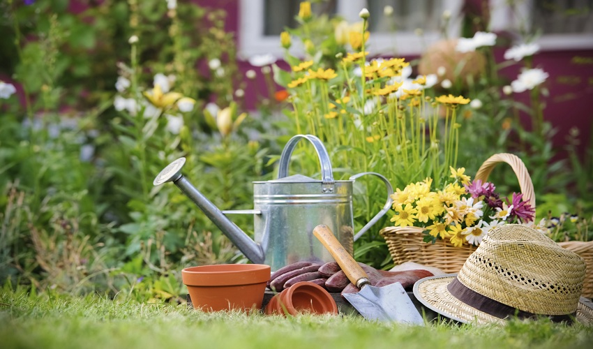 Gardening Tools You Should Have